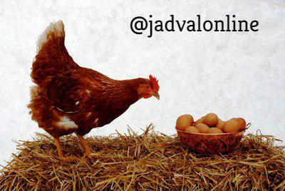 معمای تخم مرغ