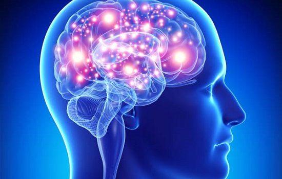 فعالیت های مناسب برای پرورش مغز