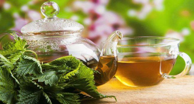 فواید شگفت انگیز مصرف چای پونه